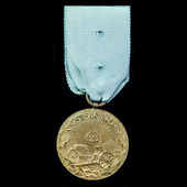 Serbia: Medal for the 1912 Serbo-Turkish Campaign, in bronze-gilt.
