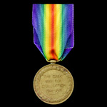 Victory Medal awarded to Private J. Donkin, Worcestershire Regiment, who served on the Western Fr...