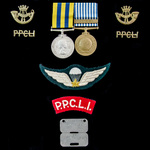 Canadian Princess Patricia's Canadian Light Infantry Korean War and Qualified Parachutist's pair ...