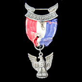   United States of America: Boy Scouts of America - Public Eagle Scout Award. An early striking ...