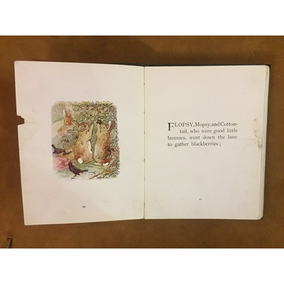 The Tale of Peter Rabbit | Marchpane