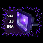 UV LED Floodlight - 50 watt - 390nm IP65