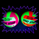 Blacklight UV-Reactive Neon Fluorescent Dayglo Volleyball