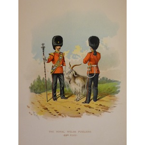The royal welsh fusiliers (23rd foot)