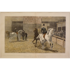 The horse show at the agricultural hall: the arabs in the ring