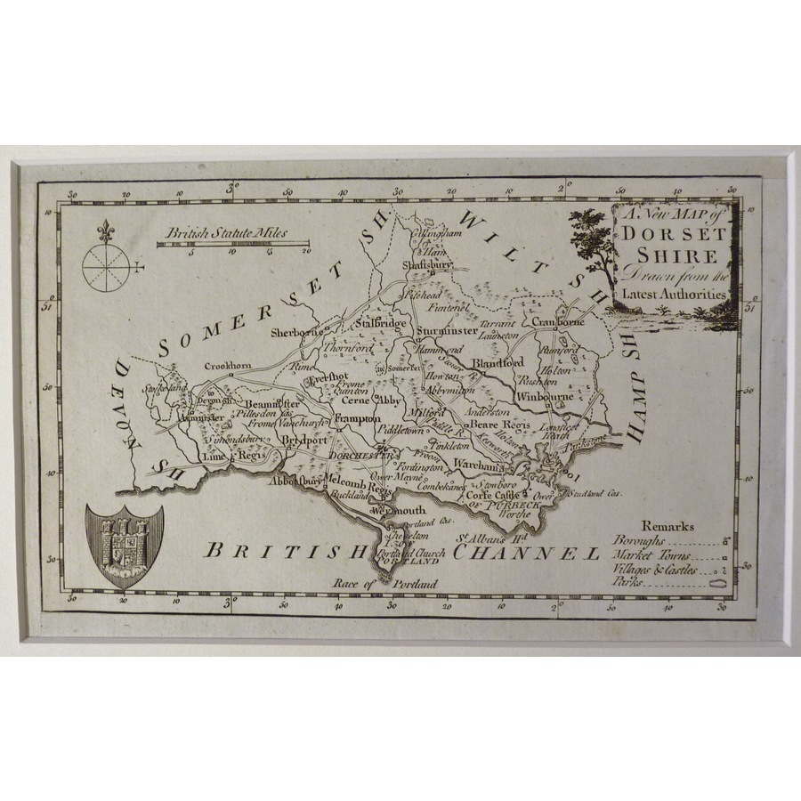 A new map of dorsetshire | Storey's