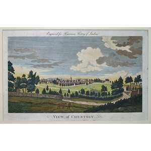 View of chertsey