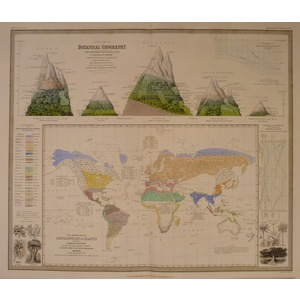Outlines of botanical geography