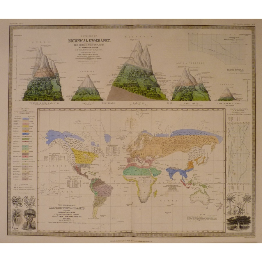 Outlines of botanical geograp. | Storey's