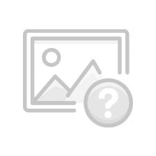 Spined loach, minnow, loach and bleak