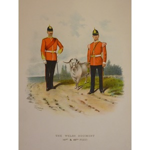 The welsh regiment (41st & 69th foot)