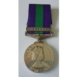 General Service Medal 1918-62, Eliz II, clasp Cyprus named to 23068602 Private B. Towers, Green H...