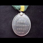 EviiR TFEM to 183 SJT E.J. FORSTER 6th NORTHUMBERLAND FUSILIERS - announced in Army Orders, July ...