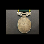 GviR EFFICIENCY MEDAL  Bar 'TERRITORIAL'  to S/SJT HAYNES R.A.