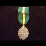 EviiR TFEM to 664 PTE T. PARS. | Great War Medals